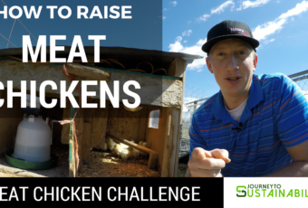 Raising Meat Chickens – Ultimate Meat Chicken Challenge