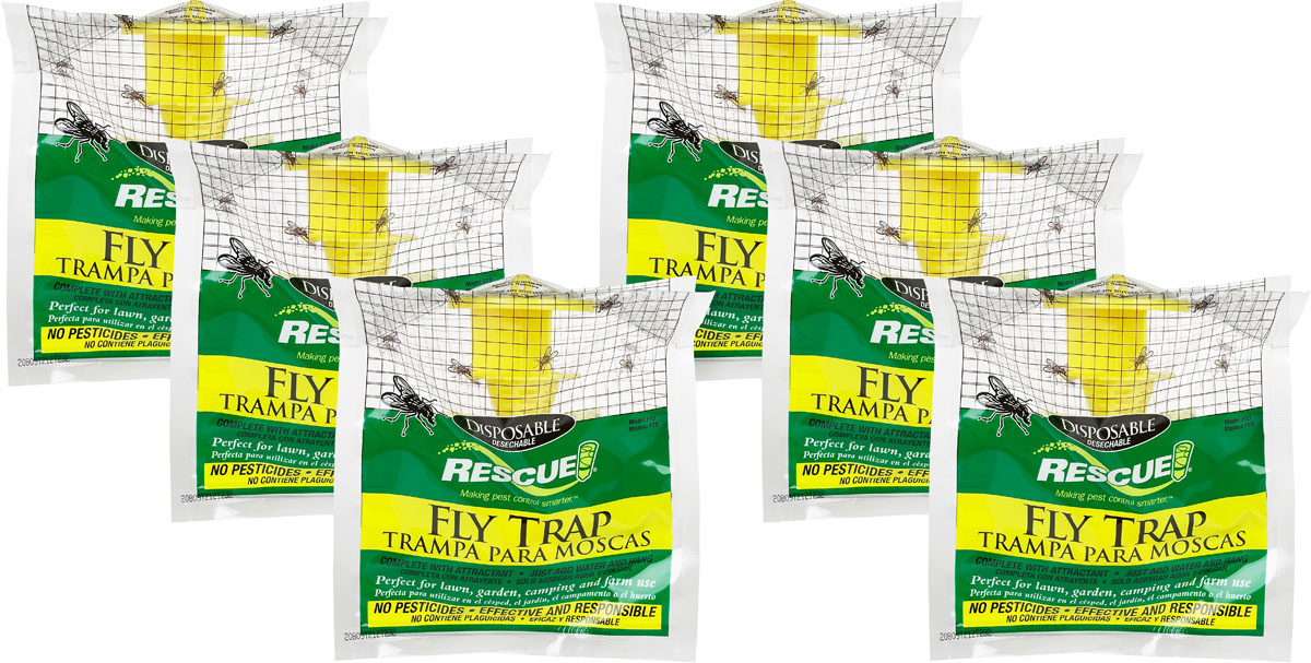 How To Get Rid Of Flies On Your Farm - Journey to Sustainability